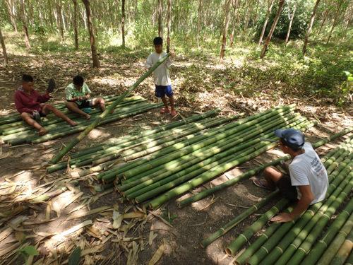 repair-bamboo.jpg
